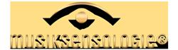Musiksensologie Logo